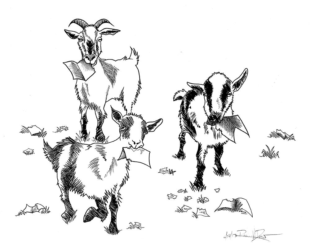Line Drawing Goat : Goats line art rkdia comics